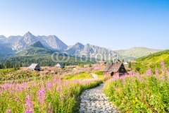 Wooden huts scattered on flowery meadow