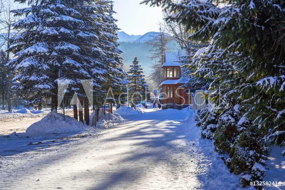 Zakopane in Tatra mountains at winter time, Poland