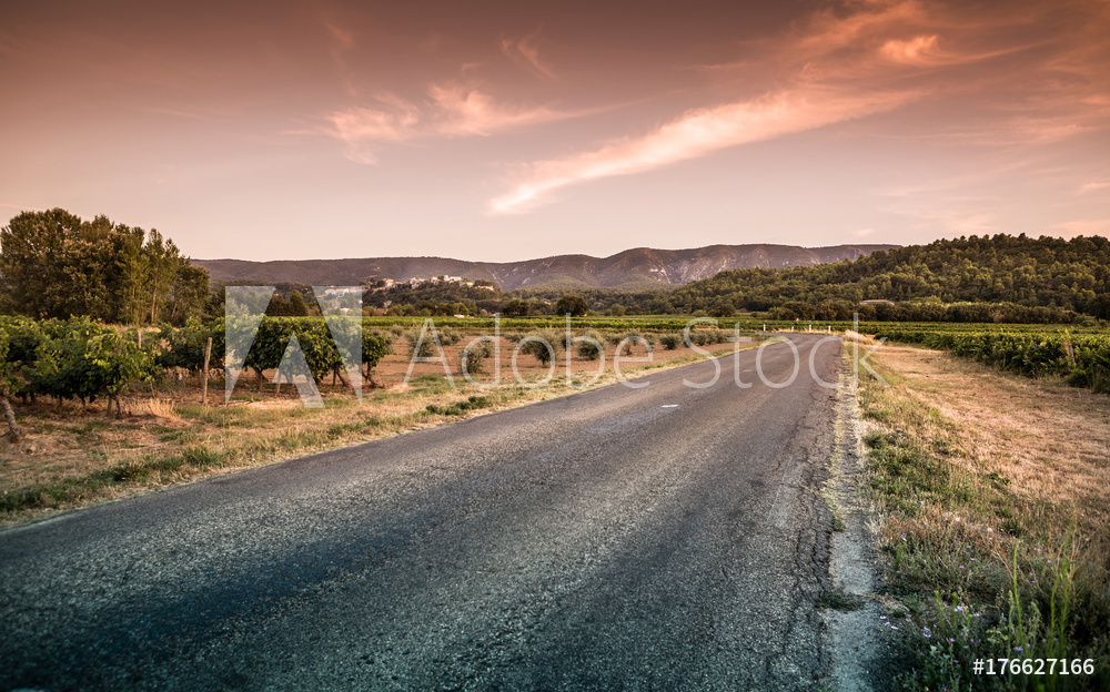 Provence (France) landscape - road, hills, vineyards